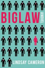 BIGLAW A NOVEL