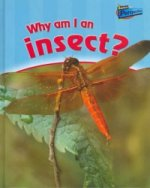 Why am I an Insect?