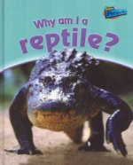 Why am I a Reptile?