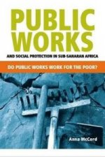 Public Works and Social Protection in Sub-Saharan Africa