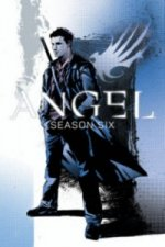 Angel: Season Six, Volume 1