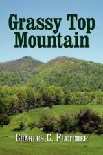 Grassy Top Mountain