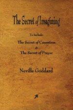 Secret of Imagining