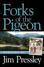 Forks of the Pigeon