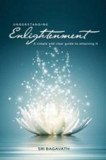 Understanding Enlightenment
