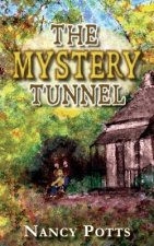 Mystery Tunnel