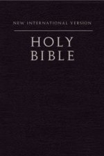 NIV Holy Bible, Compact