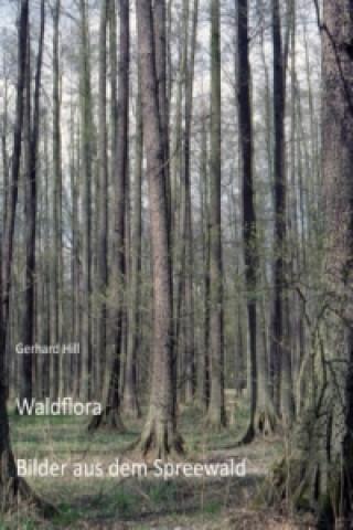Waldflora