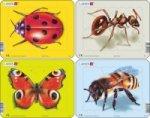 Puzzle MINI - Beruška,motýl,mravenec,včela/5 dílků (4 druhy)
