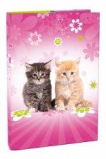 Box na sešity A4 - Cats