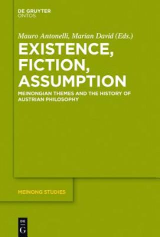 Existence, Fiction, Assumption