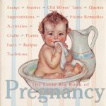 Little Big Book of Pregnancy