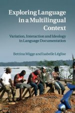 Exploring Language in a Multilingual Context