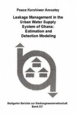 Leakage Management in the Urban Water Supply System of Ghana: Estimation and Detection Modeling