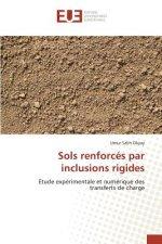Sols Renforces Par Inclusions Rigides