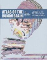 Atlas of the Human Brain