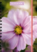 Notebook Pink Cosmos
