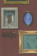 Monster: The Perfect Edition, Vol. 7