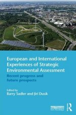 European and International Experiences of Strategic Environm
