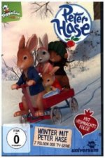 Peter Hase - Winter mit Peter Hase. Tl.8, 1 DVD