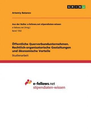 OEffentliche Querverbundunternehmen. Rechtlich-organisatorische Gestaltungen und oekonomische Vorteile