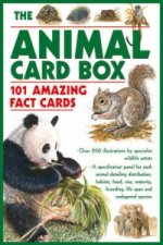 Animal Card Box