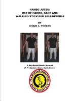 Hanbo Jutsu: Use of Hanbo, Cane and Walking Stick for Self Defense