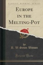 Europe in the Melting-Pot (Classic Reprint)
