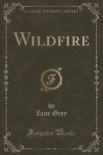 Wildfire (Classic Reprint)