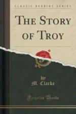 Story of Troy (Classic Reprint)