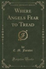 Where Angels Fear to Tread (Classic Reprint)