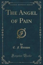 Angel of Pain (Classic Reprint)