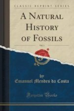 Natural History of Fossils, Vol. 1 (Classic Reprint)