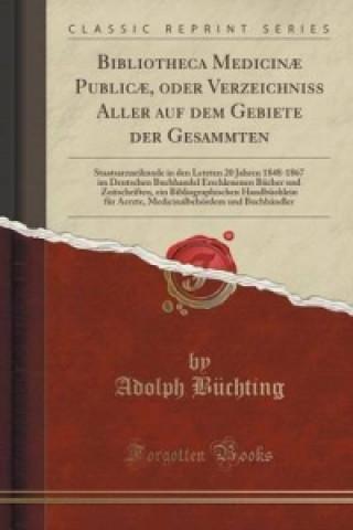 Bibliotheca Medicinae Publicae, Oder Verzeichniss Aller Auf Dem Gebiete Der Gesammten