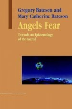 Angels Fear