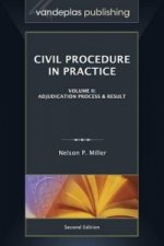 Civil Procedure in Practice, Volume II