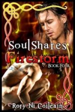 Firestorm - Book Four of the Soulshares Series
