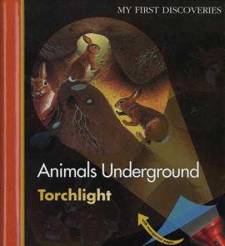 Animals Underground