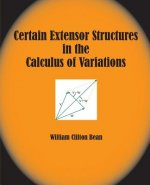 Certain Extensor Structures in the Calculus of Variations