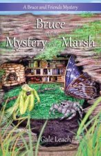 Bruce and the Mystery in the Marsh
