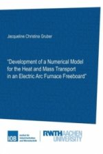 Development of a Numerical Model for the Heat and Mass Transport in an Electric Arc Furnace Freeboard