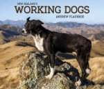 New Zealand's Working Dogs