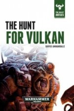 Hunt for Vulkan