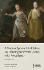 Modern Approach to Lifetime Tax Planning (with Precedents)