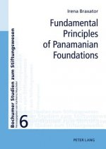 Fundamental Principles of Panamanian Foundations