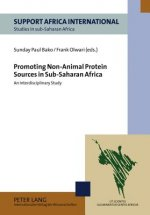 Promoting Non-Animal Protein Sources in Sub-Saharan Africa