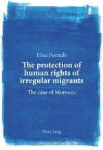 Protection of Human Rights of Irregular Migrants