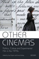 OTHER CINEMAS POLITICS CULTURE AND