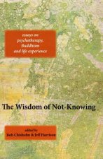Wisdom of Not-Knowing