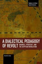 Dialectical Pedagogy of Revolt,: Gramsci, Vygotsky, and the Egyptian Revolution